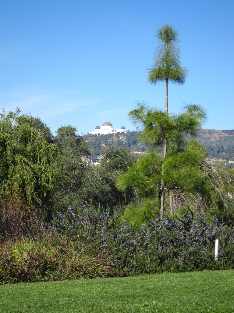 barndall art park in los feliz, los angeles