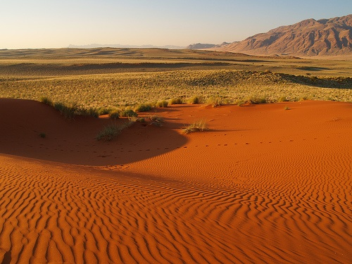red sand dunes in namibia, as photographed by rui ornelas