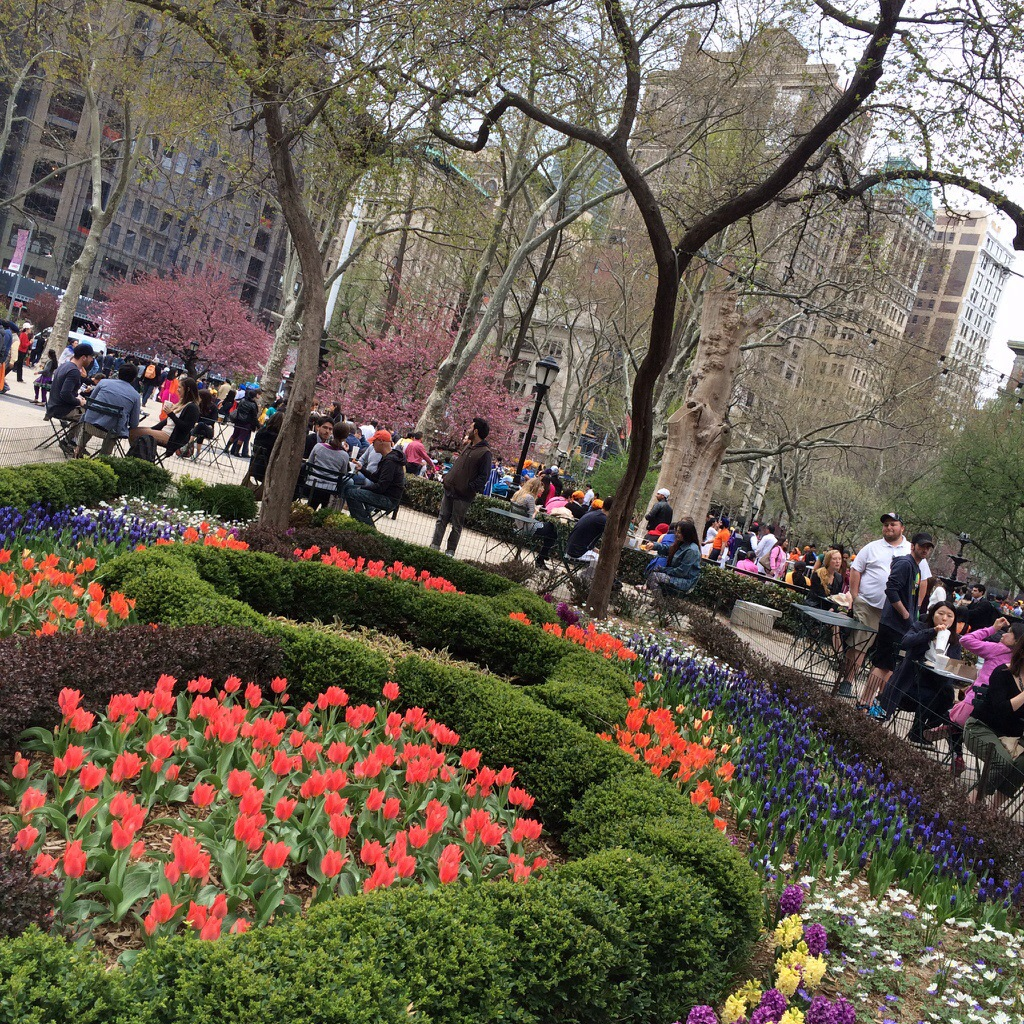 bright and cheery at madison square in new york
